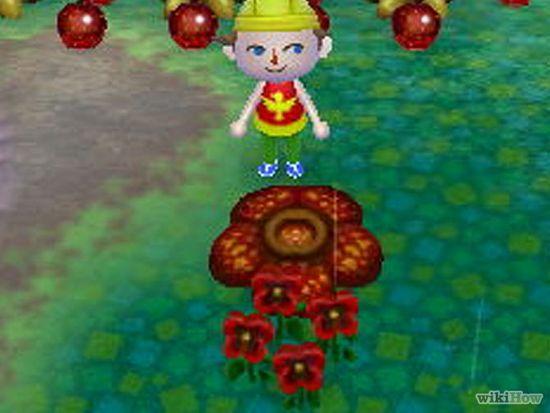 Фото - Як отримати ідеальні фрукти в грі Animal Crossing: New Leaf