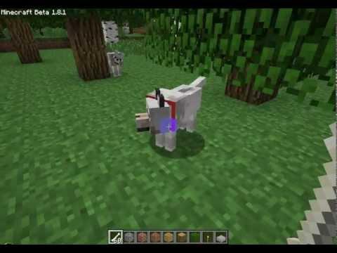 Фото - Як приручити вовка в грі Minecraft