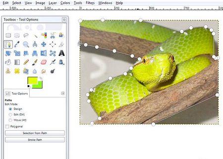 Як видалити фон за допомогою Інструменту виділення контуру GIMP