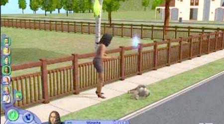 Як контролювати тварин в грі Sims 2: Домашні Тварини.